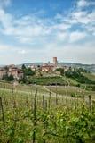 Wijngaarden rond een provincieplaats Stock Afbeelding