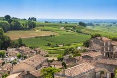 Wijngaarden in St. Emilion, Frankrijk Royalty-vrije Stock Foto