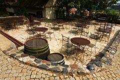 Wijngaarden in troja Stock Afbeelding