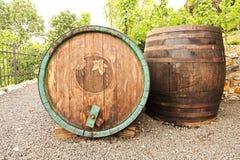 Wijngaarden in troja Royalty-vrije Stock Foto's
