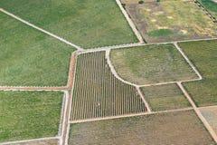 Wijngaarden van de Lucht Royalty-vrije Stock Foto
