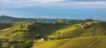 Wijngaarden van Langhe, Piemonte, Unesco-werelderfenis Stock Fotografie