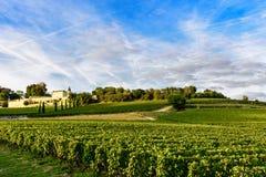 Wijngaarden van Saint Emilion, Bordeaux Wineyards in Frankrijk stock afbeelding