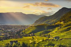 Wijngaardenmening in Santa Maddalena Bolzano Trentino Alto Adige Sud Tyrol, Italië stock foto's