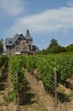 Wijngaardhuis Royalty-vrije Stock Foto's