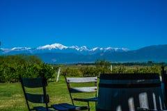 Wijngaardlandschap met Tupungato Vulcan en de Andes op Backgr Stock Afbeelding
