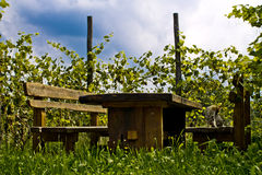 Wijngaardlijst Royalty-vrije Stock Foto's