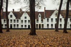 10 Wijngaerde Брюгге Béguinage, Бельгия Стоковое Изображение RF