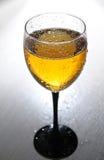 Wijnglas Stock Fotografie