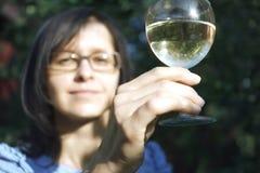 Wijnglas Royalty-vrije Stock Foto's