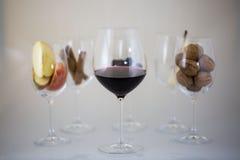 Wijnglases, aromatisch vat, kaneel, het proeven royalty-vrije stock afbeelding