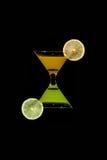 Wijnglazen met met jus d'orange en kiwifruit Royalty-vrije Stock Foto