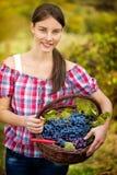 Wijnhandelaar met mand van druiven stock foto's