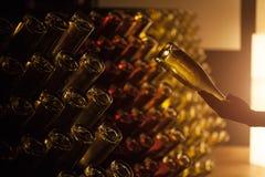 Wijnkelder met flessen Stock Foto
