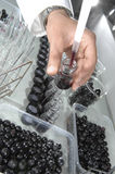 Wijnkwaliteitscontrole het testen in modern laboratorium Royalty-vrije Stock Foto's