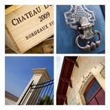wijnmakerij Stock Fotografie