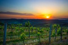 Wijnmakerij in het gebied van de Chianti. Italië Royalty-vrije Stock Afbeeldingen