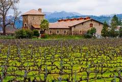 Wijnmakerij in Vallei Napa Royalty-vrije Stock Afbeeldingen