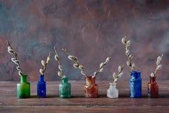 Wijnoogst gekleurde glasflessen met bloeiende wilgentakken,  Royalty-vrije Stock Afbeeldingen
