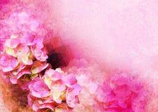 Wijnoogst gestileerd frame - hortensia stock foto