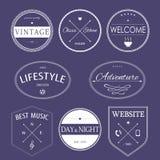 Wijnoogst gestileerde ontwerp hipster pictogrammen stock illustratie