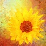 Wijnoogst gestileerde zonnebloem stock afbeelding