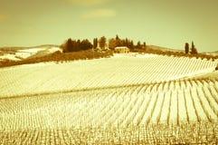 Wijnoogst snowscape Stock Fotografie