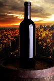Wijnproductie Royalty-vrije Stock Fotografie