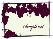 Wijnstok royalty-vrije illustratie