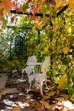 Wijnstok-behandelde portiek met gehamerd meubilair bij de herfst royalty-vrije stock afbeelding