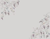 Wijnstok en de lijn de met de hand getrokken tekening van de kunstkleur van de Takillustratie vector illustratie