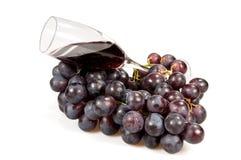 Wijnstok en wijn. Stock Afbeeldingen