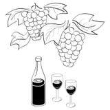 Wijnstok en wijn Stock Foto's