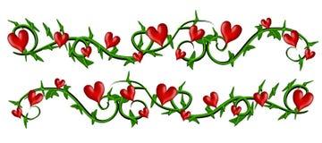 Wijnstok met de Grenzen van de Harten van de Valentijnskaart Stock Afbeelding