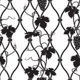Wijnstok op een omheining in zwart-wit Royalty-vrije Stock Afbeelding