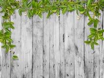Wijnstokbladeren met klein bloemkader Stock Afbeelding