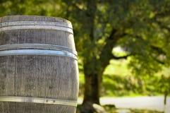 Wijnvat Stock Foto