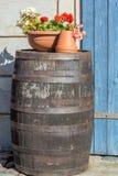 Wijnvat als decoratie in de tuin stock fotografie