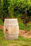 Wijnvat bij wijngaard Royalty-vrije Stock Afbeelding