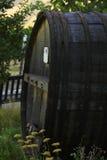 Wijnvat in wijngaard Stock Fotografie