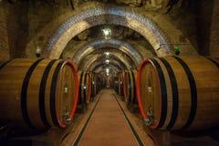 Wijnvatten (botti) in een Montepulciano-kelder, Toscanië Royalty-vrije Stock Foto's