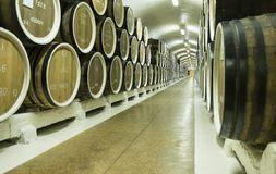 Wijnvatten in de kelderverdieping worden opgeslagen die royalty-vrije stock afbeelding