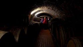 Wijnvatten in een oude kelder bij wijnmakerij worden gestapeld die stock videobeelden