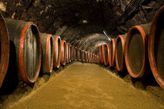 Wijnvatten in wijnmakerijkelder Stock Afbeelding