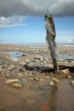 Wijs het Estuarium van Punthumber af stock fotografie