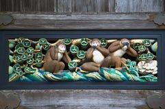 Wijze apen Royalty-vrije Stock Foto's