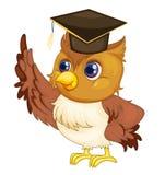 Het een diploma behalen uil stock afbeelding beeld 19823681 - Geloofsbrieven ontwerp ...