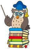 Wijze uilleraar op boeken Stock Foto