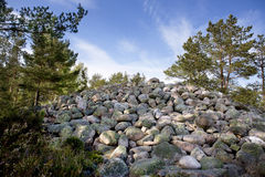 Wiking grave Fotografia Stock