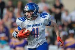 Wikinger gegen Drachen Silverhawks Lizenzfreies Stockbild